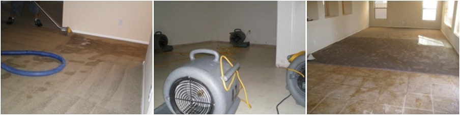Carpet Flood Damage Restoration Werribee